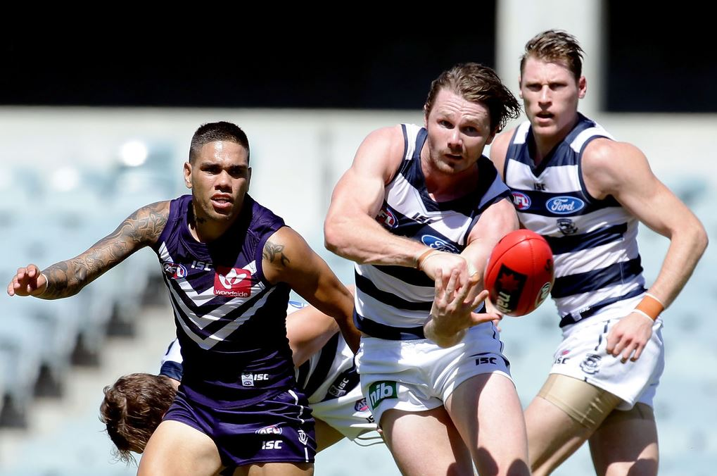 AFL 2020 Daily Fantasy Tips: Round 17 - Cats v Tigers