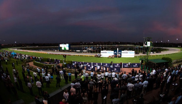 """""""The Swoopers"""" Sportchamps Friday Night Mooney Valley Racing"""