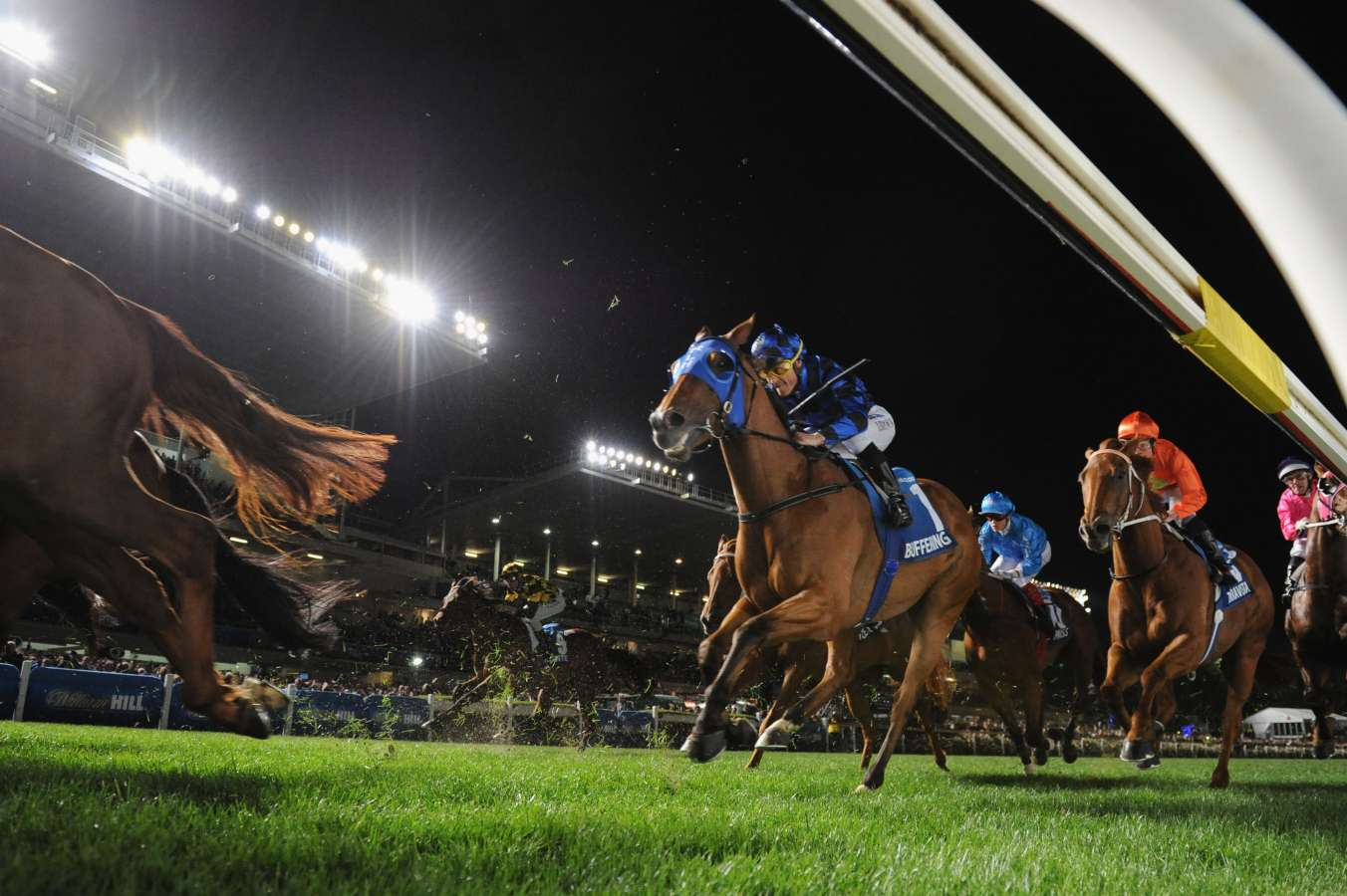 Fantasy Horse Racing Tips: Friday October 25th 2019